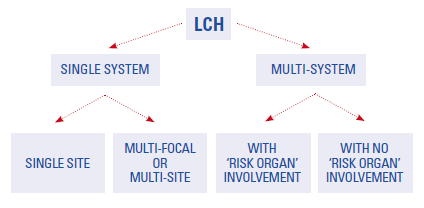 LCH is divided into two main groups